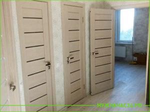 Светлые три двери с маленькими вставками стекла